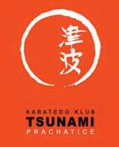 Karate klub Tsunami Prachatice